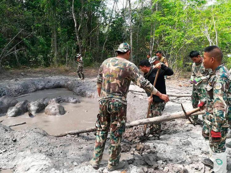 Thailand_Elephant_80546