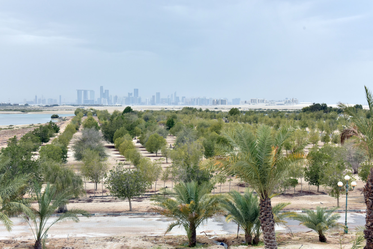 Abu Dhabi unveils Dh5 billion project to develop island that