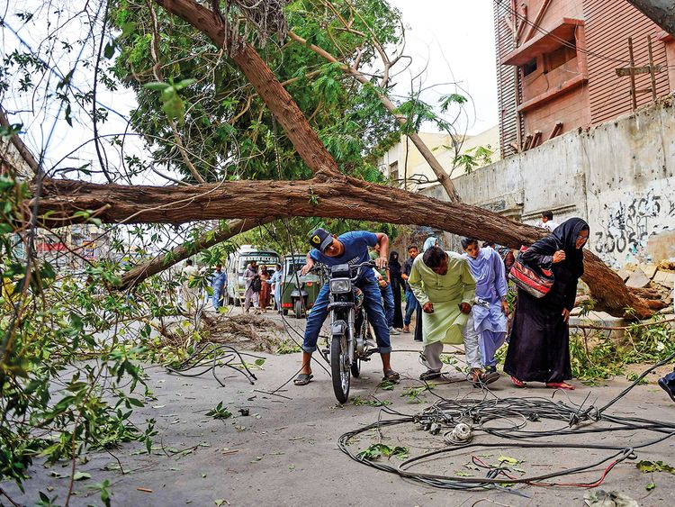 People cross a street under a falling tree