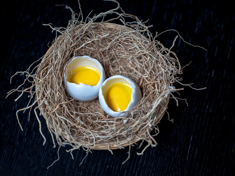 Masala-Library_Fake-Eggs-for-web