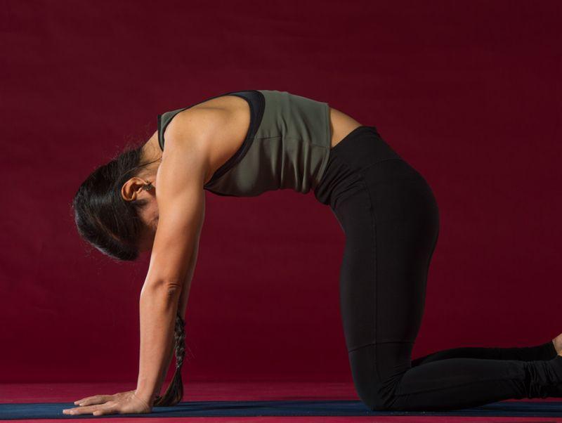 Yoga_With_Nerry_Cat_Pose_(Marjaryasana)-1556112991976