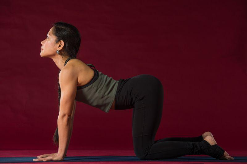 Yoga_With_Nerry_Cow_Pose_(Bitilasana)-1556112995370