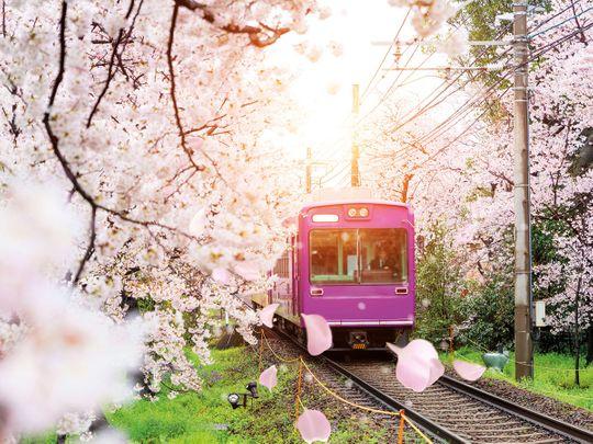 kyoto train