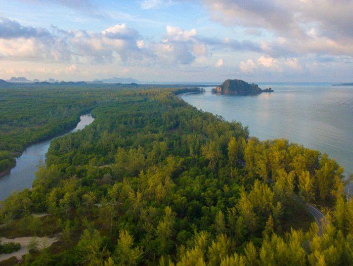 tab_Forest_vista_iStock-957100334-1556718485051