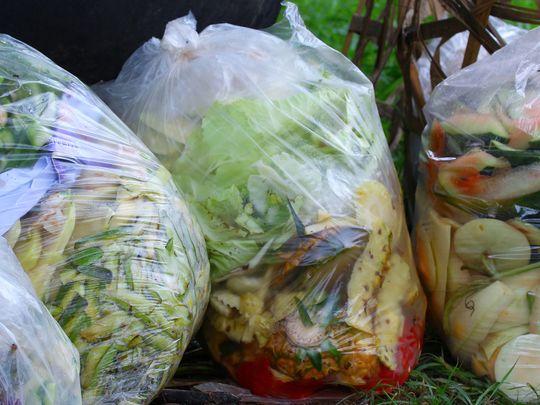 RDS_190509 Food wastage lead