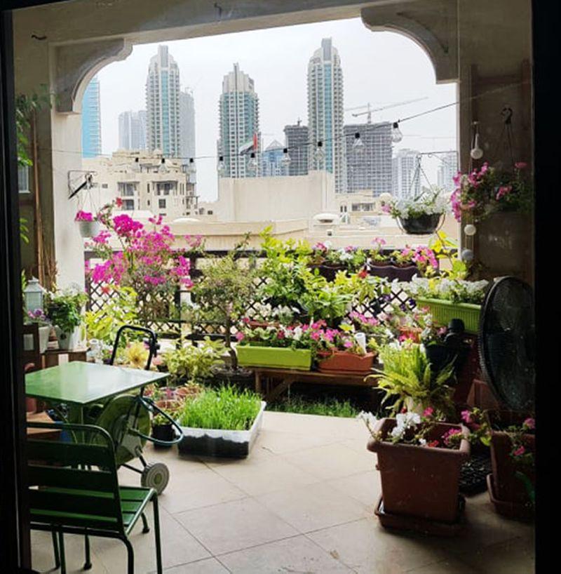 gardenoldtown