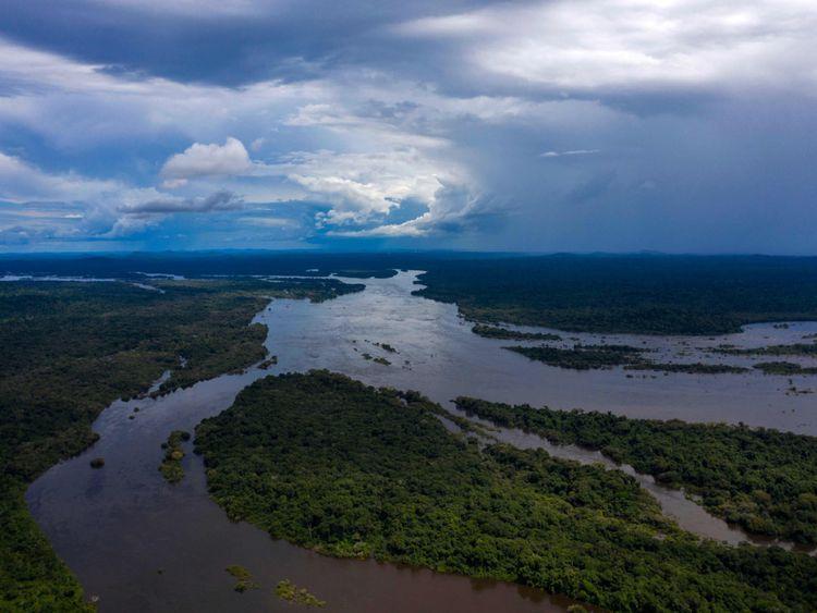 OPN_190516 Amazon rainforest-1558008024836