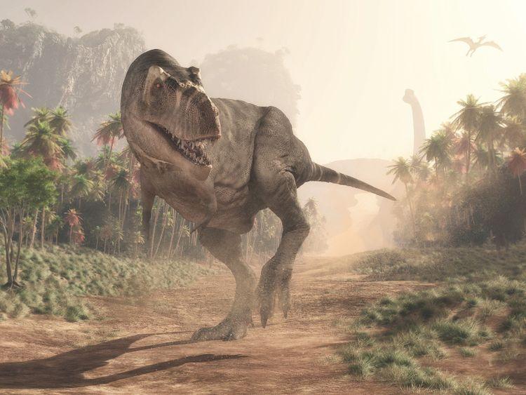 opn_190520 T-Rex-1558357145585