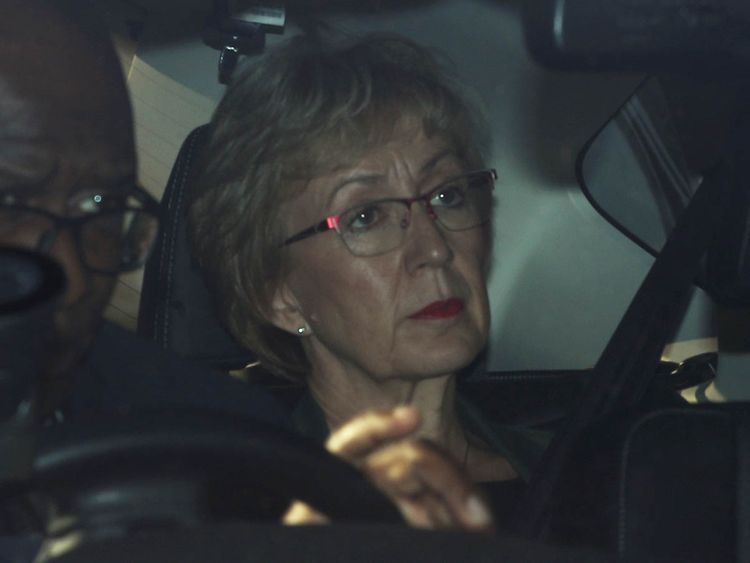 190522 Leadsom