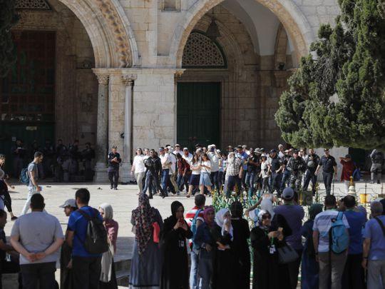 OPN Palestinians-1559474264054