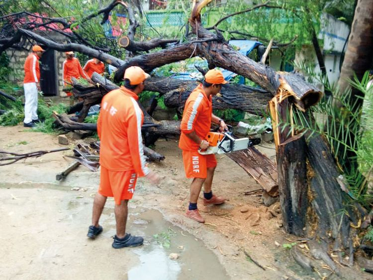 NDRF soldiers cut branches of an uprooted tree