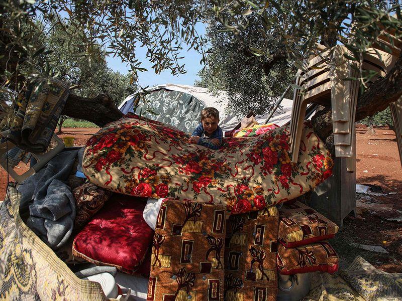 Syria furniture