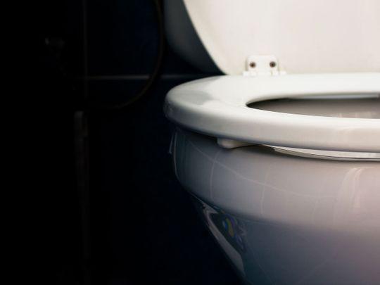 toilet generic