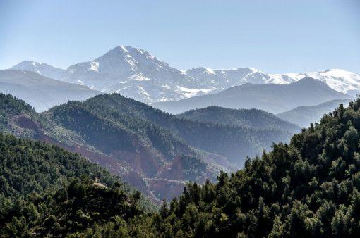 OPN Mountains-1561802241920