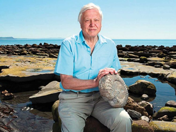 190701 David Attenborough