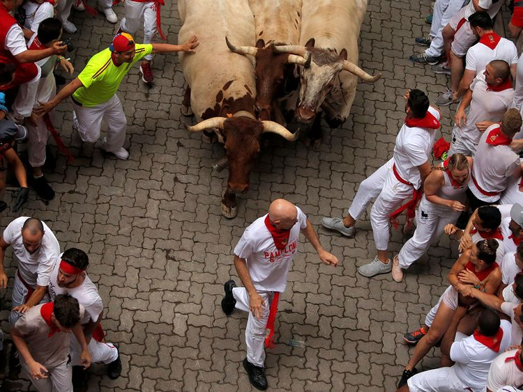 2019-07-07T074035Z_550480527_RC14042F4910_RTRMADP_3_SPAIN-CULTURE-BULLS-(Read-Only)