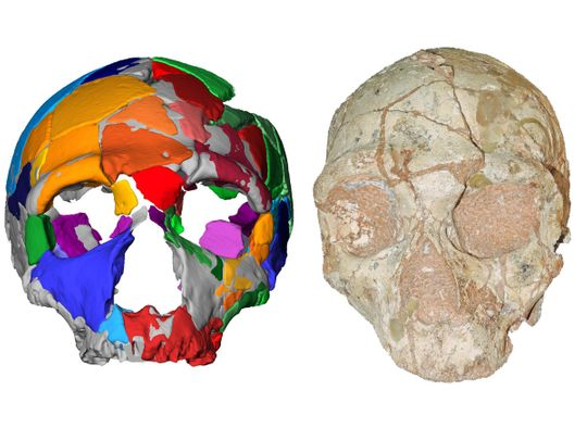 SCIENCE-ARCHAEOLOGY-OLDEST HUMAN-EUROPE