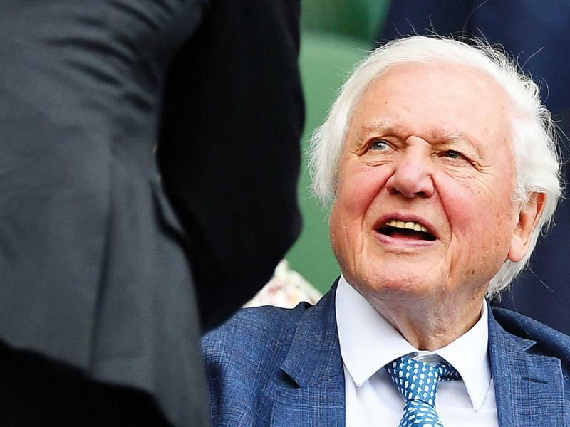 190715 David Attenborough