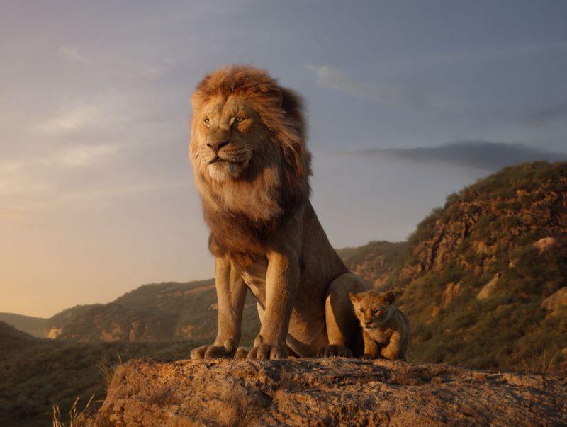 Lion King 123-1563352871619