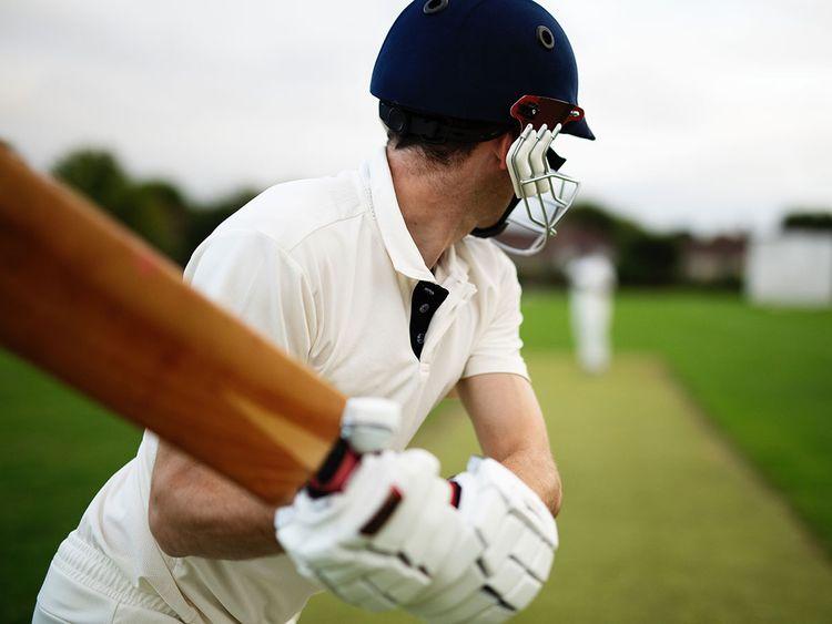 cricket bat generic