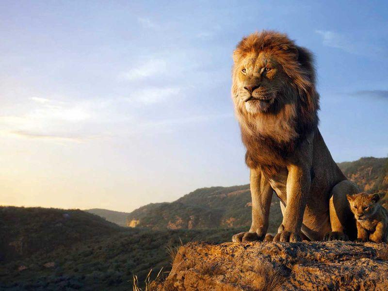 190718 lion king