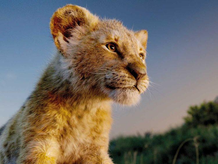 190722 lion king