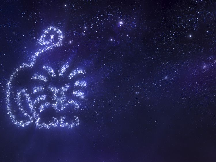 Your weekly horoscope: July 22 - July 28, 2019