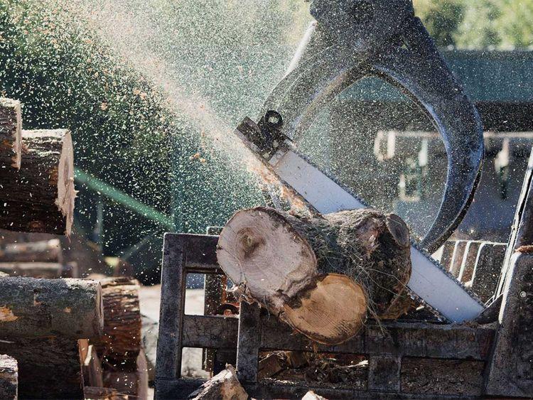 190726 sawdust