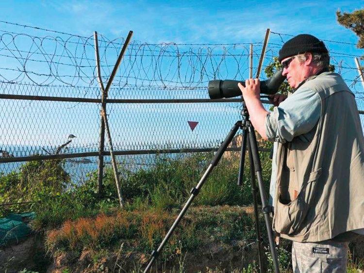 South Korea-based birder Nial Moores
