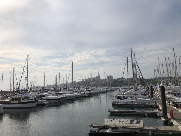 The Alfruda Marina-1564404862201