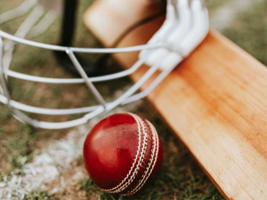 cricket ball, cricket bat