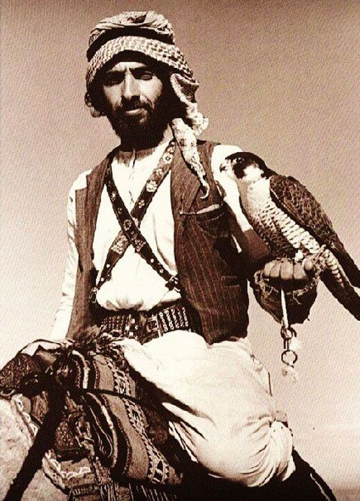 Sheikh Zayed with a falcon