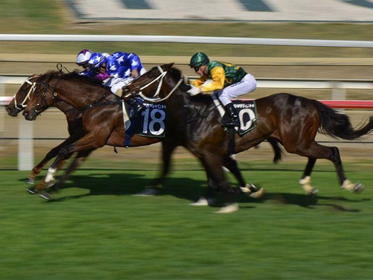 $20 million Saudi Cup a big boost for international horse racing