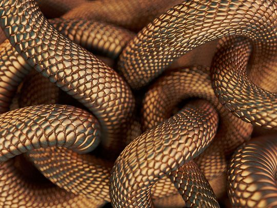 Bronze coloured snakes