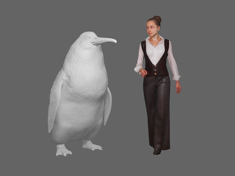 New_Zealand_Extinct_Monster_Penguin_59947