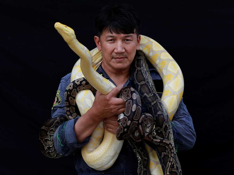 190821 snake catcher