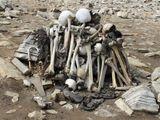 India's 'Skeleton lake' contains bones of mediterranean migrants: Study