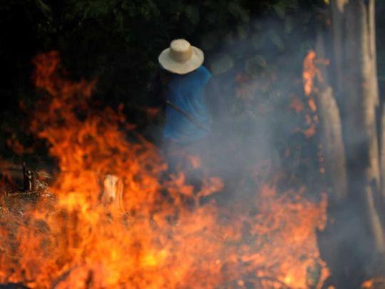 190823 amazon jungle fire