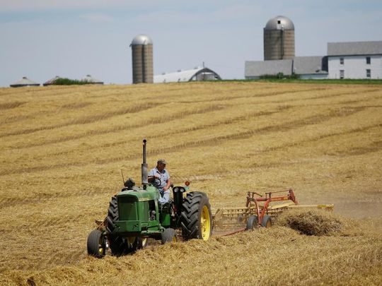 opn american farm-1566645011387