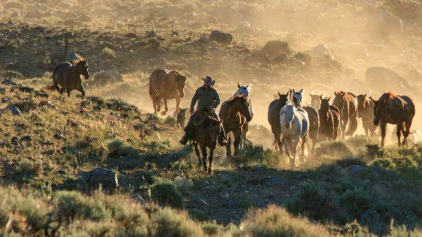 TAB Wyoming1-1567000966674