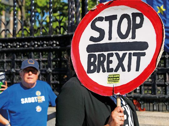 191913 anti-brexit