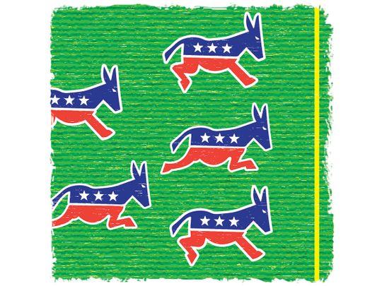 190914 democratic field