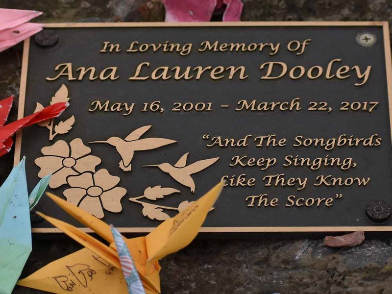 A memorial plaque honoring Ana Dooley in a park in New York