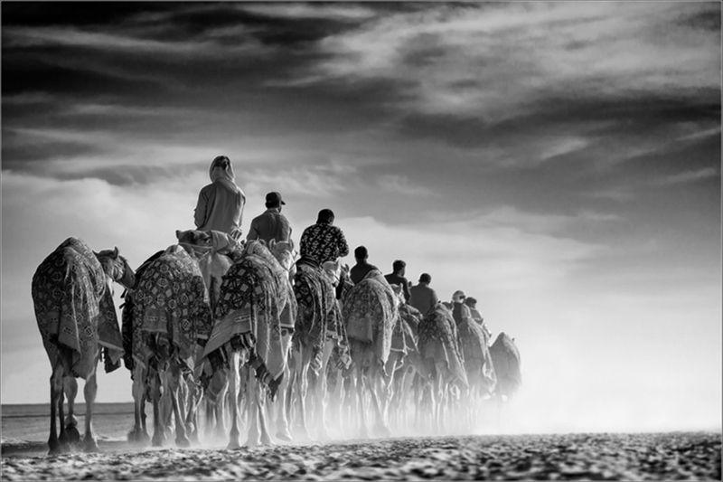 Amer Al Ali-1568791334199