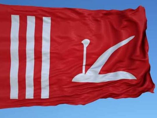 Jammu and Kashmir was permitted to fly its own flag along with the national flag under Article 370