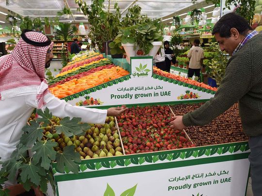 Registration for UAE's $1 million food challenge begins