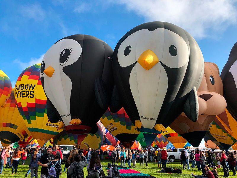 International_Balloon_Fiesta_86305