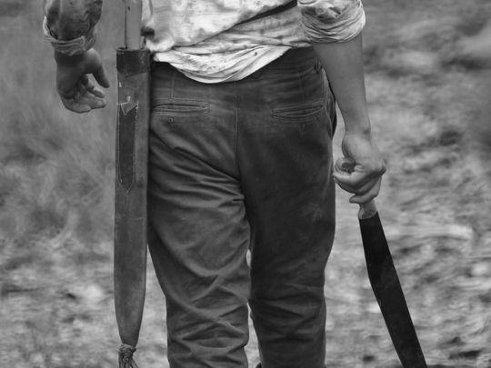 man-2641544_1920 machete generic