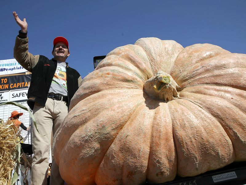 Pumpkin Weigh-Off