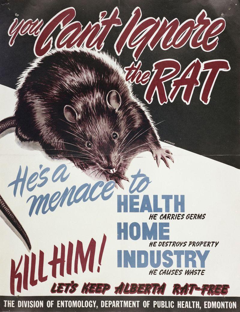 WKR 191017 RATS1-1571399690661